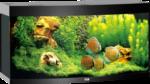 Juwel Aquarium »Vision 260« schwarz