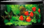Juwel Aquarium »Trigon 350« schwarz