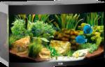 Juwel Aquarium »Vision 180« schwarz