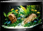 Juwel Aquarium »Trigon 190« schwarz