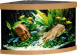 Juwel Aquarium »Trigon 190« buche