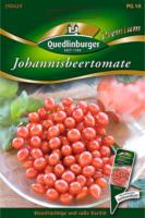 Quedlinburger Johannisbeertomate