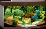 Juwel Aquarium »Vision 180« dunkelbraun