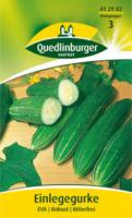 Quedlinburger Einlegegurke Eva