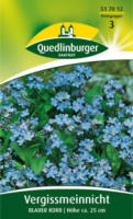 Quedlinburger Vergißmeinnicht, Myosotis Blauer Korb
