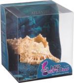 Aquariendeko »Hydor Atlantis« Muschel
