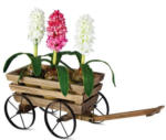TrendDesign - Pflanzwagen aus Holz - Maße: 53 x 20 x 19 cm
