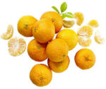 "Spanien Clementinen ""Nadorcott"" Kl. I, je 1 kg"
