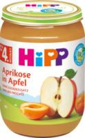 Früchte Aprikose in Apfel nach dem 4. Monat