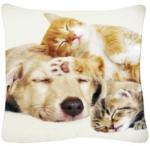 """Dekokissen """"Hund mit Katzen"""" 40 x 40 cm"""