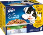Nassfutter für Katzen, So gut wie es aussieht, Gemüse in Gelee, Multipack 12x100g