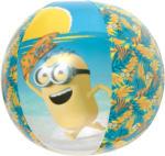 Minions Wasserball