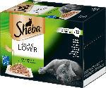 Sheba Nassfutter für Katzen, Sauce Lover, Feine Vielfalt,12x85g