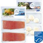 Deutsche See Japanische Kammmuscheln 200 g oder Lachs-Filets 320 g, gefroren, jede 200/320 g-Packung