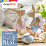 Fest im Nest
