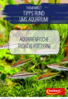 Themenwelt Tipps rund ums Aquarium