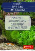 Themenwelt Aqua